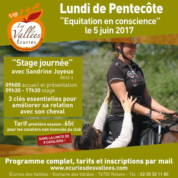stage équitation en conscience les vallées rouen juin 2017