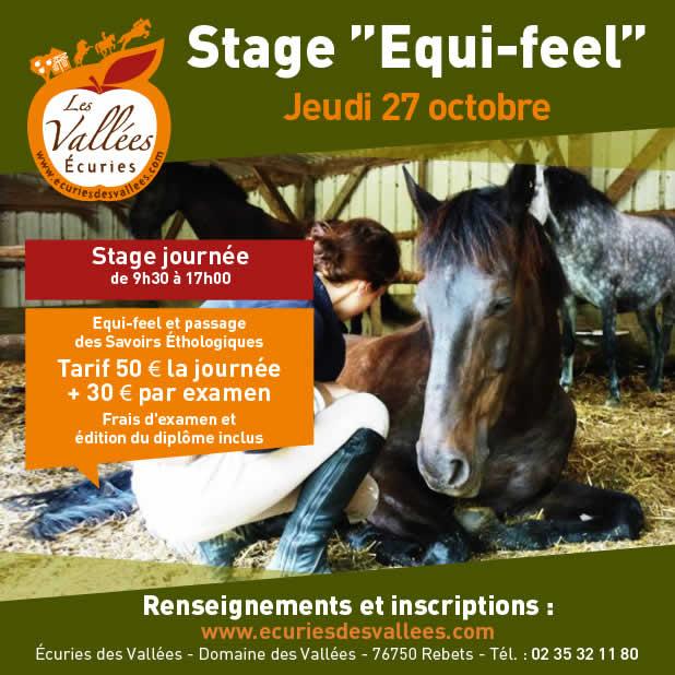 stage équitation les vallées rouen octobre 2017
